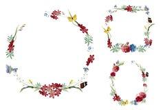 Grupo de ilustrações florais do quadro ilustração royalty free