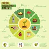 Grupo de Infographics da mola Imagem de Stock