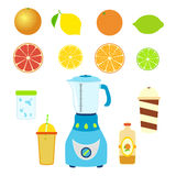 Grupo de ingredientes do suco Misturador, misturador, garrafa, copos e vidros ilustração do vetor
