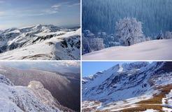 Grupo de inverno imagem de stock