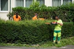 Grupo de jardineiro profissional que guarda o ajustador de conversão em suas mãos Fotografia de Stock Royalty Free