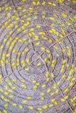 Grupo de jerarquías de los capullos del gusano de seda Foto de archivo libre de regalías