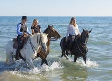 Grupo de jinetes del caballo imágenes de archivo libres de regalías