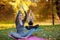 Grupo de jovens mulheres que fazem exercícios da ioga no parque da cidade do outono Conceito do estilo de vida da saúde fotografia de stock royalty free