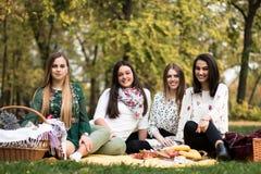 Grupo de jovens mulheres que têm um piquenique no parque Imagem de Stock