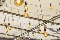 Grupo de lâmpadas incandescentes de formulários e de formas diferentes imagens de stock