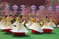 Grupo de la danza de muchachas en el concierto Imagen de archivo libre de regalías