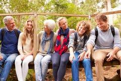 Grupo de la familia que se sienta en un pequeño puente en un bosque Imágenes de archivo libres de regalías