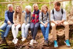 Grupo de la familia que se sienta en un puente en un bosque, integral Fotos de archivo