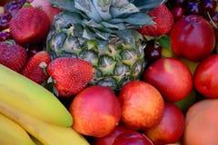 Grupo de la fruta imagenes de archivo