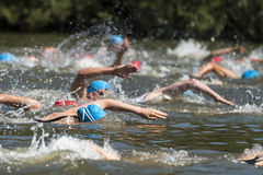 Grupo de la natación imagenes de archivo