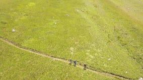 Grupo de la visión aérea de turista que camina en prado verde en valle de la montaña del verano almacen de video