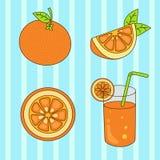 Grupo de laranja Ilustração Royalty Free