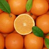 Grupo de laranjas com folhas Fotografia de Stock Royalty Free