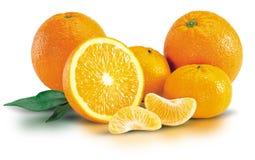 Grupo de laranjas frescas Imagens de Stock
