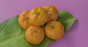 Grupo de laranjas frescas Fotografia de Stock