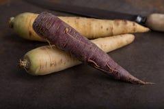 Grupo de las zanahorias de la herencia - 3 Fotos de archivo