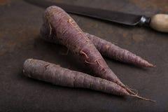Grupo de las zanahorias de la herencia - 4 Foto de archivo libre de regalías