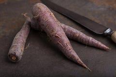 Grupo de las zanahorias de la herencia - 5 Fotografía de archivo