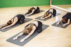 Grupo de lección practicante de la yoga de la gente deportiva joven con el instructor, sentándose en el ejercicio de Balasana, ac Imagen de archivo libre de regalías