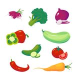 Grupo de legumes orgânicos e frescos ilustração do vetor