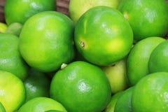 Grupo de limão verde orgânico fresco do citrino do cal na bandeja de madeira, no mercado de produto fresco na seção asiática do f Fotografia de Stock