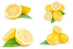 Grupo de limons isolados em um fundo branco Foto de Stock Royalty Free