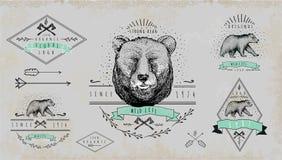 Grupo de logotipo do urso do vintage Projeto para o t-shirt Fotografia de Stock Royalty Free
