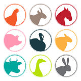 Grupo de logotipo dos animais de exploração agrícola ilustração royalty free