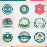 Grupo de logotipo dos gráficos e do texto do sinal do negócio ilustração royalty free
