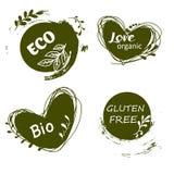 Grupo de logotipos, ícones, elementos do projeto Alimento natural, alimento biológico, alimento do vegetariano ilustração do vetor