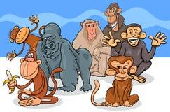 Grupo de los personajes de dibujos animados de los monos y de los monos ilustración del vector
