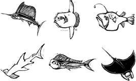 Grupo de los pescados Fotografía de archivo libre de regalías