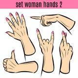 Grupo de mãos da mulher em vários gestos Graphhics do vetor Imagens de Stock Royalty Free