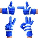 Grupo de mãos nas luvas azuis feitas malha isoladas. Polegar acima, apontando, vitória, sinal aprovado imagem de stock royalty free