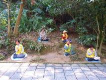 Grupo de médicos de las mujeres que meditan debajo de árbol fotos de archivo libres de regalías
