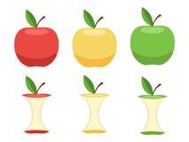 Grupo de maçãs inteiras e de núcleos de Apple Fotografia de Stock