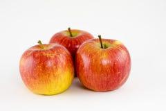 Grupo de maçãs maduras imagem de stock
