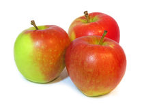Grupo de maçãs maduras isoladas em um fundo branco Imagens de Stock
