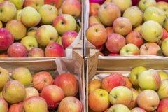 Grupo de maçãs vermelhas e verdes em caixas no supermercado Maçãs no mercado do fazendeiro Caixas com maçãs frescas em uma mercea foto de stock