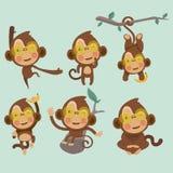 Grupo de macacos engraçados bonitos Fotos de Stock Royalty Free