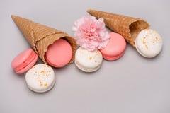 Grupo de macarons cor-de-rosa e brancos em cones do waffle com flor do cravo Fotografia de Stock