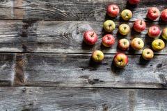 Grupo de manzanas estacionales orgánicas en viejo fondo de madera rústico Imágenes de archivo libres de regalías
