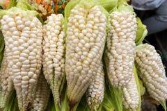 Grupo de mazorcas de maíz en una parada del mercado fotografía de archivo libre de regalías