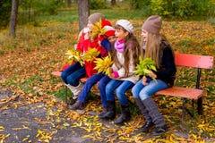 Grupo de meninas no parque do outono no brench Foto de Stock
