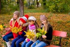 Grupo de meninas no parque do outono no brench Imagens de Stock Royalty Free