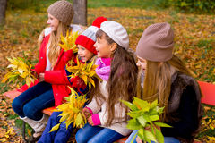 Grupo de meninas no parque do outono no brench Imagem de Stock