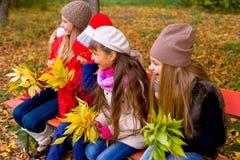 Grupo de meninas no parque do outono no brench Fotos de Stock Royalty Free