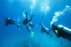 Grupo de mergulhadores Foto de Stock Royalty Free