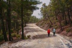 Grupo de mochileiros com trouxas chuva-cobertas que anda em uma estrada de terra na floresta da montanha Imagens de Stock